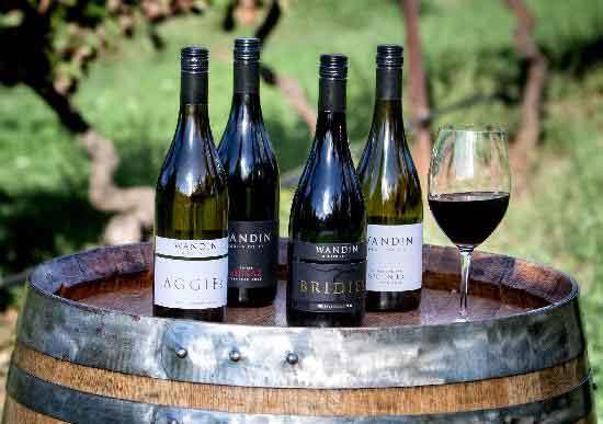 Wandin wines